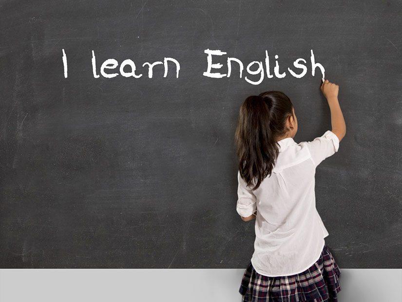 Newlink Education Bilingüismo