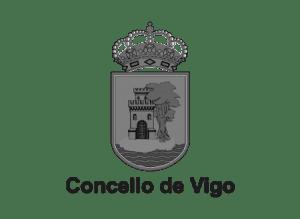 Newlink Education Concello de Vigo