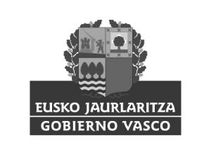 Newlink Education Gobierno Vasco